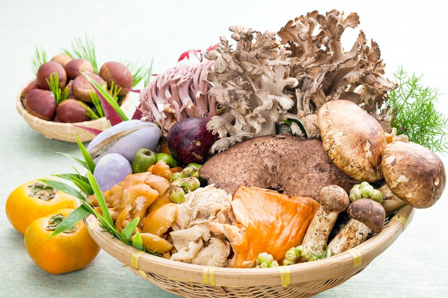玉貴の四季 - 山粧う頃|山菜料理 玉貴